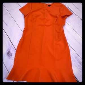 Ann Taylor Size 14 Brand New Dress with tag
